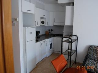 Cute apartment in Miño (Galicia-Spain) - Mino vacation rentals