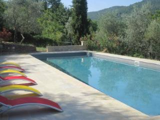 Quiet Beautiful Property in Chianti, Large Pool - Chianti vacation rentals