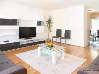 First-class-apartments Schoenbrunn - Josefstadt vacation rentals