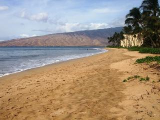 Kihei Kai #15 Condo is Only Steps to Sugar Beach. Fully Updated! Great Rates! - Kihei vacation rentals