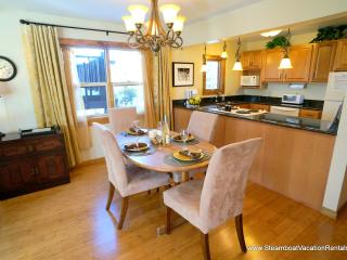 JVT Condo #6 - Steamboat Springs vacation rentals
