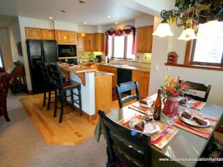 Cozy 2 bedroom Apartment in Steamboat Springs - Steamboat Springs vacation rentals