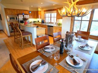 3 bedroom Apartment with Internet Access in Steamboat Springs - Steamboat Springs vacation rentals