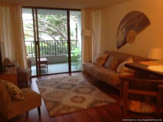 Oceanfront condo--swim with the honu(sea turtles)! - Hilo vacation rentals