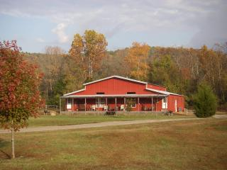 Nice Cabin with Internet Access and A/C - Norfork vacation rentals