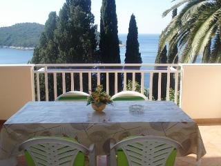 APARTMENT SEA VIEW IN DUBROVNIK - Dubrovnik vacation rentals