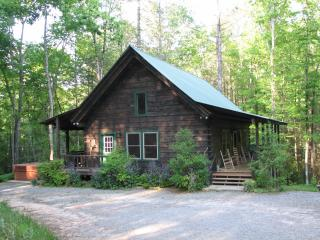 High Frontier Log Cabin - Robbinsville vacation rentals