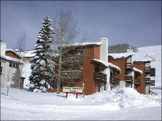 Spacious, Three-Story Townhouse - One Block from the Shuttle Stop (1278) - Crested Butte vacation rentals