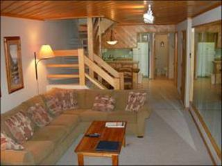 Great Condo with Mountain Views - Easy Access to Downtown (1285) - Crested Butte vacation rentals