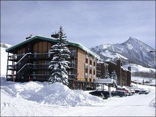 Charming Evergreen Condo - Recently Remodeled Kitchen (1295) - Crested Butte vacation rentals