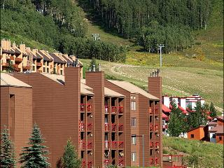 Charming & Inviting Condo - At the Base of the Resort (1313) - Crested Butte vacation rentals