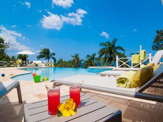 Ideal for Families & Groups, Chef & Butler, Full Time Driver & Van, Infinity Pool - Montego Bay vacation rentals