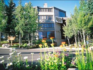 At the Base of Park City Mountain Resort - Near Main Street Shopping & Restaurants (24819) - Park City vacation rentals