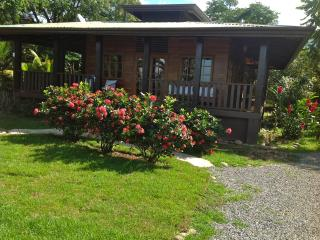 Cozy House with Internet Access and Television - Ojochal vacation rentals
