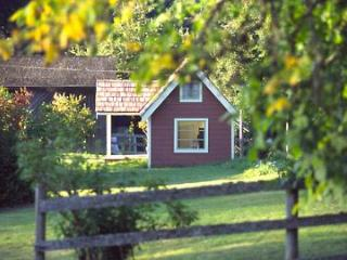 Foxglove Farm Cottages: Studio Sleeping Cabin - Salt Spring Island vacation rentals