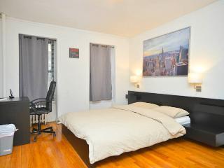 1 bedroom apt at midtown east - New York City vacation rentals