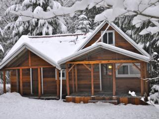 Bob's Cozy Cabin - Riverfront- Hot Tub - Greenwater vacation rentals