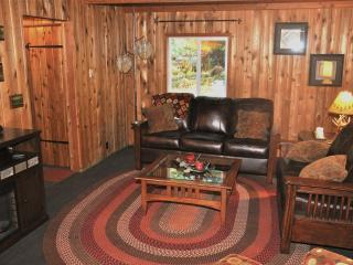 Bob's Cozy Cabin - Riverfront- Hot Tub - Greenwater vacation rentals