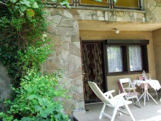 Cozy House with Satellite Or Cable TV and Outdoor Dining Area - Fonyod vacation rentals