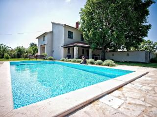 Comfortable Villa with Internet Access and DVD Player - Pavicini vacation rentals