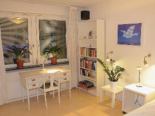 The White Room in a large Apartment, Södermalm - Stockholm vacation rentals