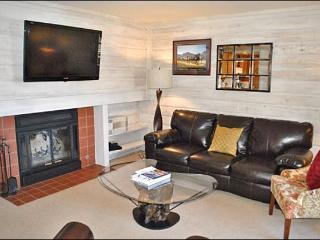 Beautiful Bluff Condo - New Furnishings (1219) - Ketchum vacation rentals