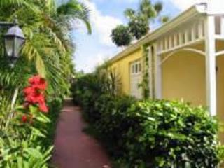 Come Home to the Toucan House at Villa Madeleine! - Image 1 - Saint Croix - rentals