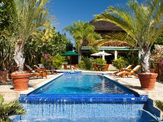 Spacious 7 Bedroom Villa with Two Swimming Pools in Discovery Bay - Discovery Bay vacation rentals