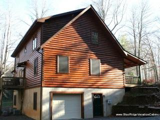 NOV 15% OFF* Lrg 6 Bdrm Cabin*Pool Table*Ping Pong - Valle Crucis vacation rentals