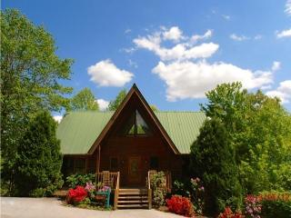 ABOVE AND BEYOND YOUR EXPECTATIONS Book Now Spring/Summer - Gatlinburg vacation rentals