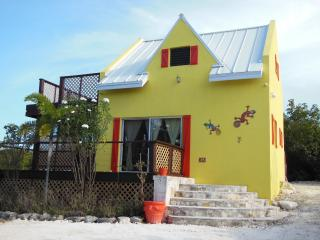 That Lovely Gecko House (GRACE BAY)-Turks & Caicos - Providenciales vacation rentals