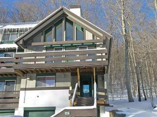 Coolidge Falls 22A - Professionally Managed by Loon Reservation Service - White Mountains vacation rentals