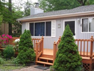 Comfortable House with Deck and Internet Access - Tobyhanna vacation rentals