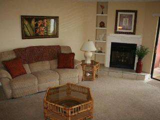 Las Brisas Unit 204, New Smyrna Beach, Florida - New Smyrna Beach vacation rentals