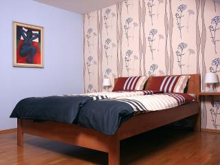 Bright 2 bedroom Zlin Apartment with Internet Access - Zlin vacation rentals