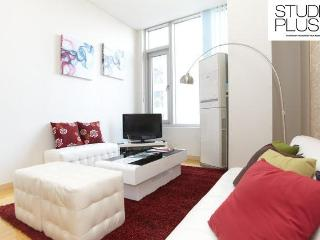 Central Location Gangnam 2bed+1loft 3BED APT - Seoul vacation rentals