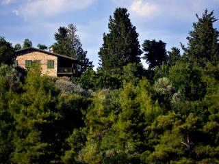 Charming Villa Seki with Pool near Antalya - Antalya vacation rentals