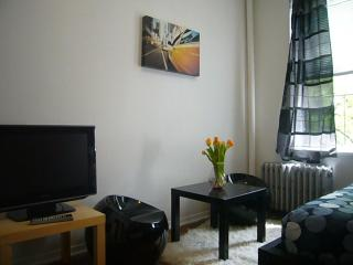 Sunny Village apt for 5-Stay like a local - New York City vacation rentals