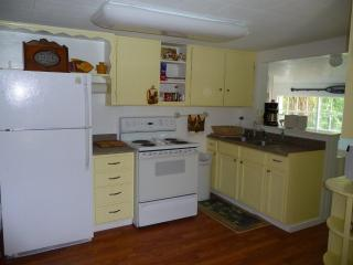 Nice House with Internet Access and A/C - Burney vacation rentals