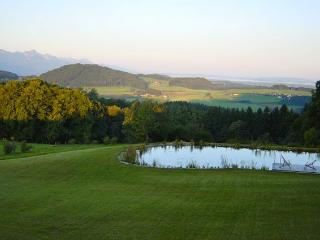 Near Saltzburg, Austria, luxury chalet, Sleeps 18 - Traunstein vacation rentals