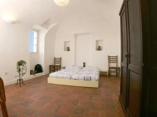 Mas Blanc a dream in the southern part of France - Gard vacation rentals