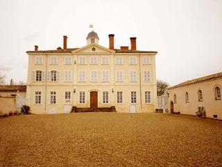 Laye Castle in Beaujolais - Lormes vacation rentals