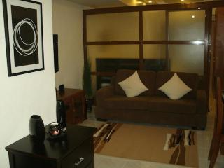 Makati Beautifully Furnished 1 Bedroom Condo - Philippines vacation rentals