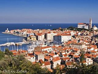 Sunny 2 bedroom House in Piran with Internet Access - Piran vacation rentals