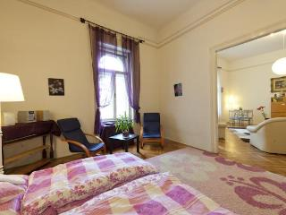 Viktoria Apartment, free WIFI - Budapest & Central Danube Region vacation rentals