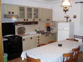 6005 A3(6) - Zadar - Zadar County vacation rentals