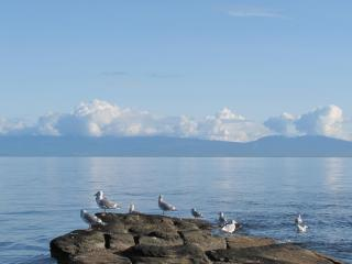 VANCOUVER ISLAND - ELES ESCAPE B&B by the SEA - Lantzville vacation rentals