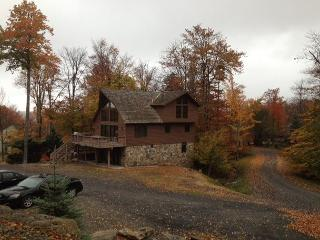Walk to Salamander from this newly remodeled chalet. - Cabins vacation rentals