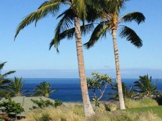 Beautifully Updated 3/3 with wonderful Ocean Views! - Kamuela vacation rentals