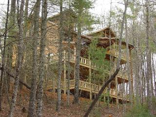 Perfect Cabin with Deck and Dishwasher - Epworth vacation rentals
